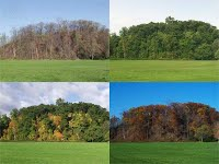 http://www.kidsgeo.com/geography-for-kids/0017B-reasons-for-the-four-seasons.php