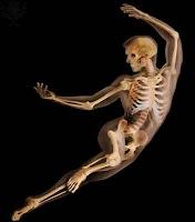 http://www.sheppardsoftware.com/health/anatomy/skeleton/Skeleton_tutorial.htm